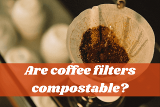 Are Coffee Filters Compostable? Let's Find Out